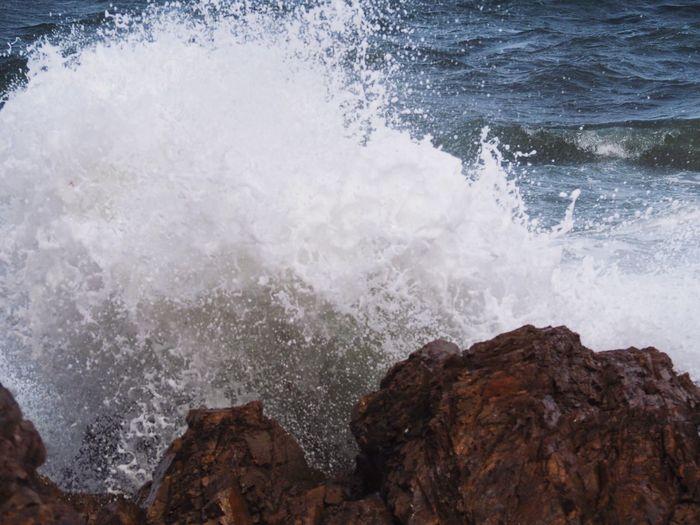 Wave Motion Sea