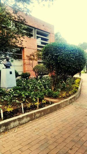 Biblioteca Biblioteca Pública Bibliotecas Parque El Tunal Bogota,colombia.
