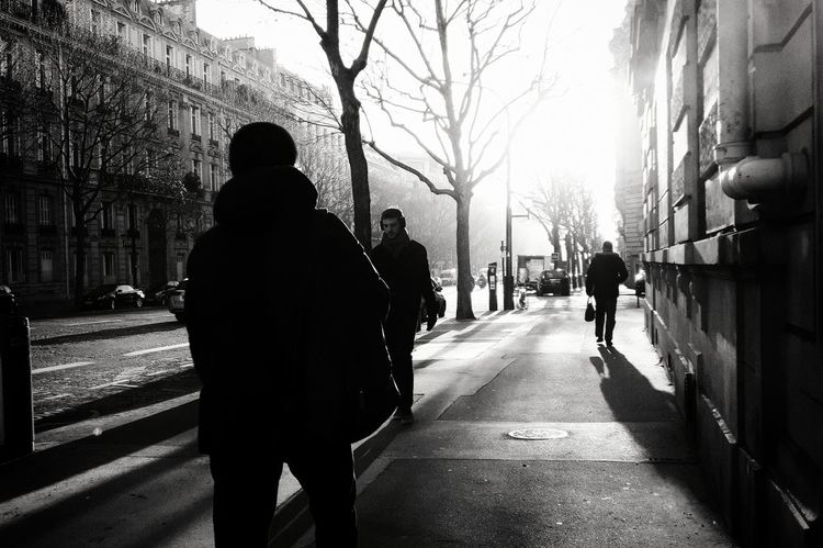Paris Boulevard Malesherbes Morning Light Lumière Matinale  Dayly Trip Trajetquotidien