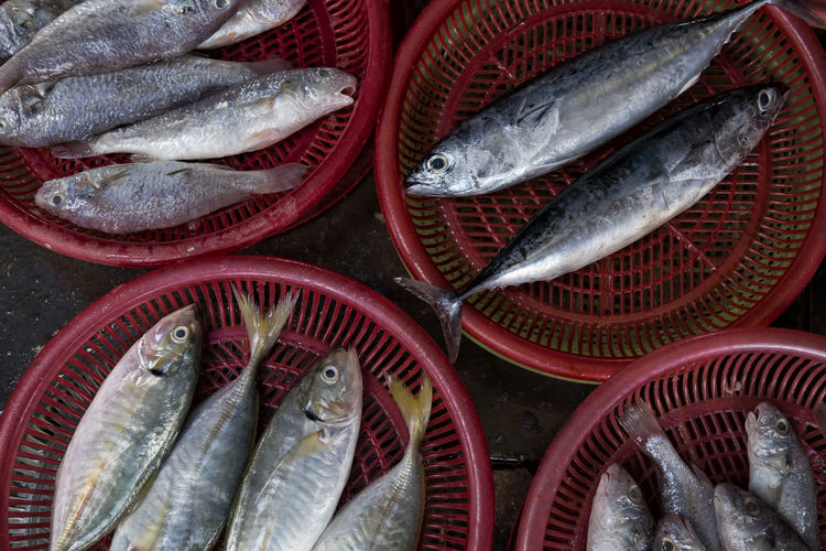 High Angle View Of Fishes In Basket At Market For Sale