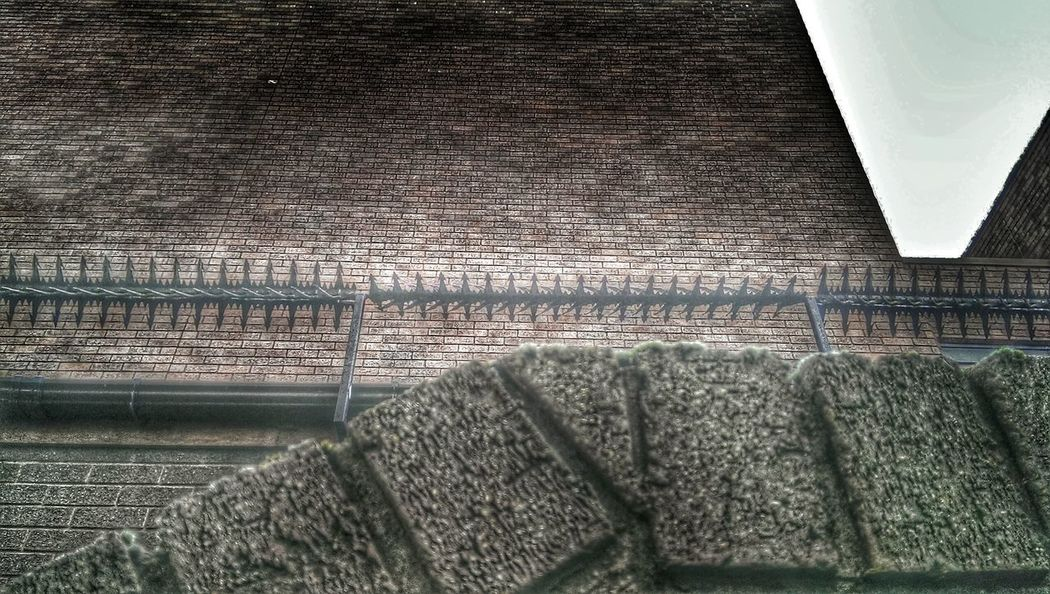 Security gone mad.. it's a Brick Wall !!!!! HDR Collection Bricks