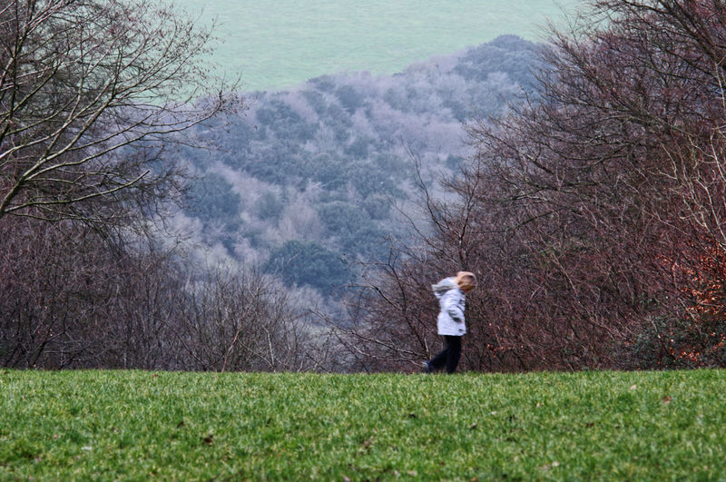 A young girl walks across the gap in the trees on a cold winter day at Queen Elisabeth Country Park near Petersfield, Hampshire Countryside Day Gap In The Trees Lonely Petersfield Portsmouth Queen Elisabeth Country Park Walking Winter Woods Young Girl