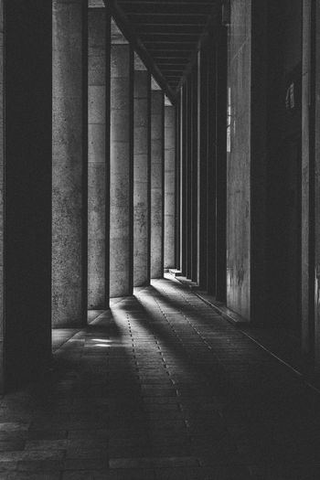 Light Streaks Absence Arcade Architectural Column Architecture Black And White Black And White Photography Building Built Structure Ceiling Colonnade Concrete Corridor Day Diminishing Perspective Direction Empty History In A Row Indoors  Nature No People The Past The Way Forward