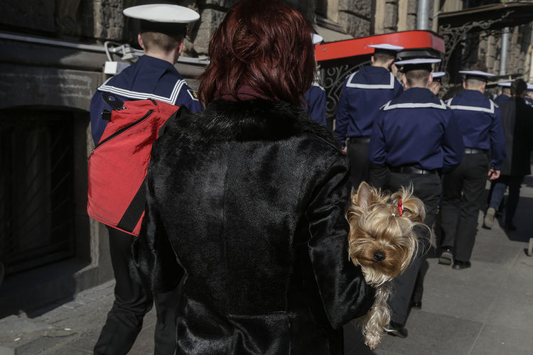 Rear view of people walking with dog