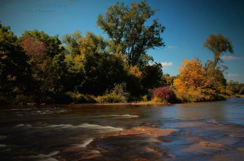 The Credit River Mississauga Fall Colours