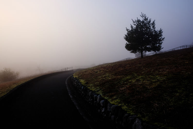 Beauty In Nature Cold Temperature Day Fog Grass Landscape Nature No People Outdoors Road Scenics Sky The Way Forward Tranquil Scene Tranquility Tree