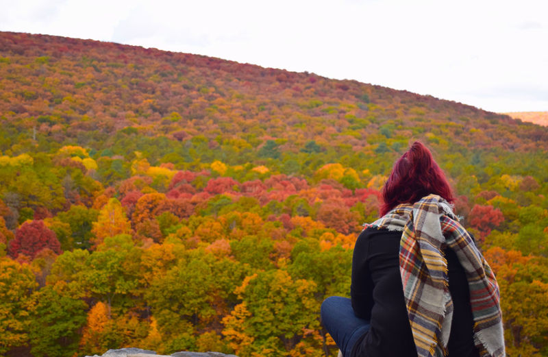 Rear view of woman looking at trees on mountain against sky during autumn