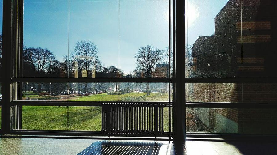 Radboud Umc  Nijmegen