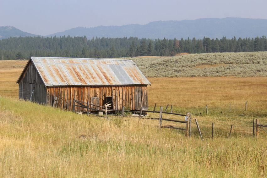 #barn #fence #mountianview #trees