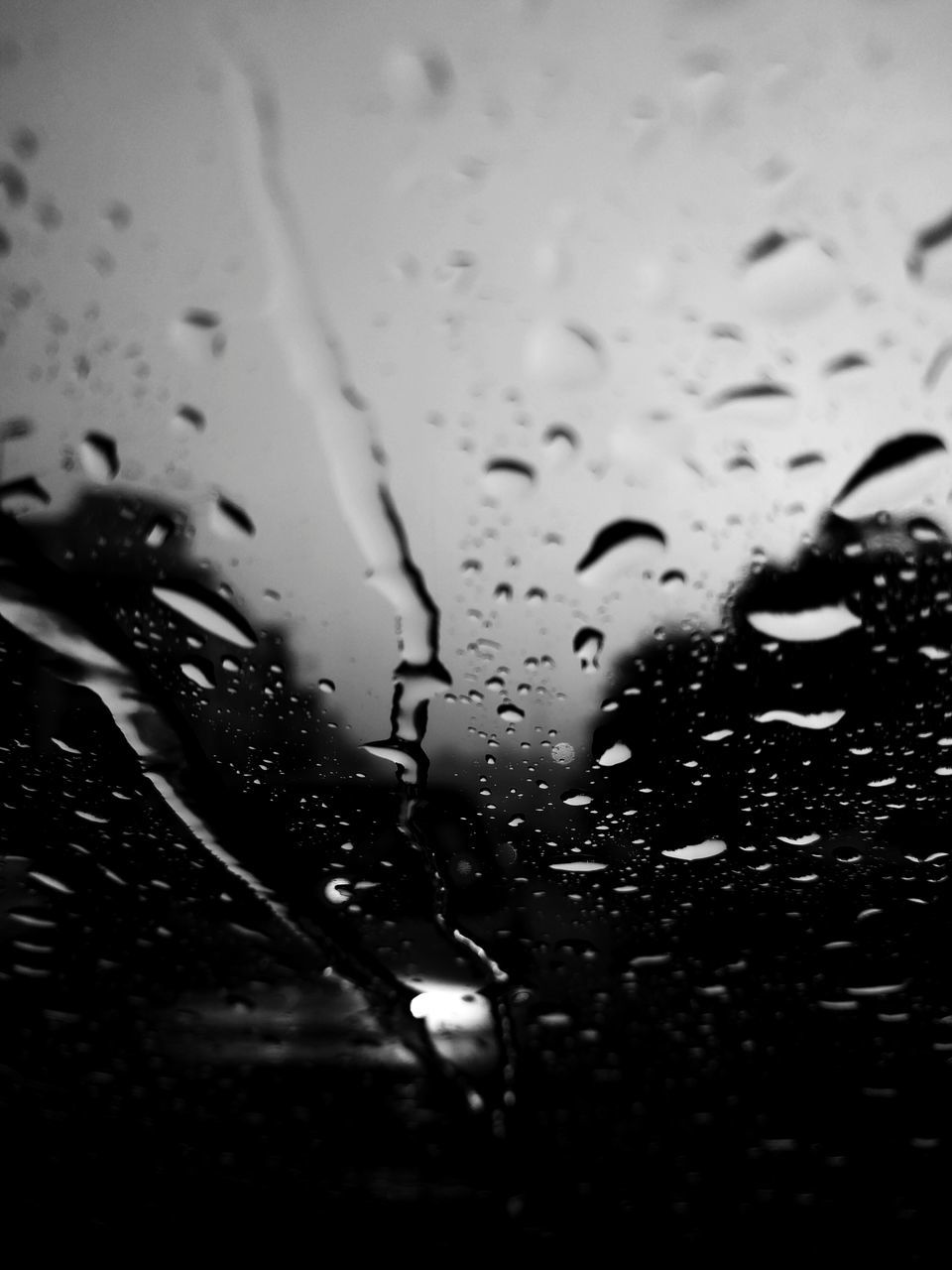 drop, wet, water, raindrop, close-up, land vehicle, window, no people, indoors, day, architecture, freshness, nature, animal themes, sky