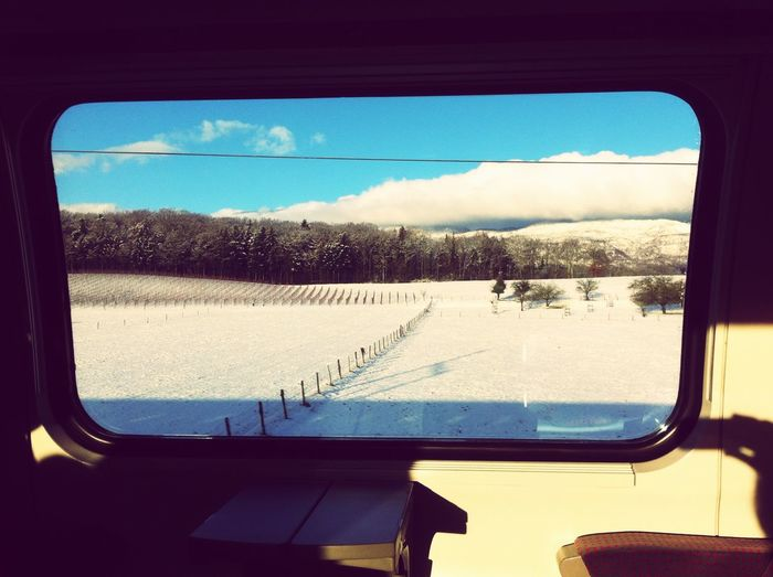 On The Move Journeys On A Winters Day Train Ride Through The Window