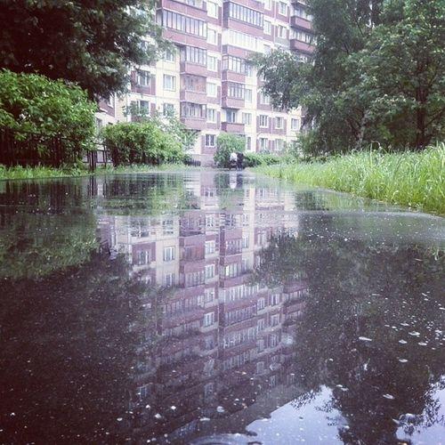 Питер асфальт Дождь отражения город улица дома