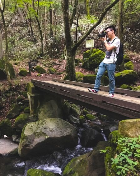 Feel The Journey Forest Bridge Ultimate Japan