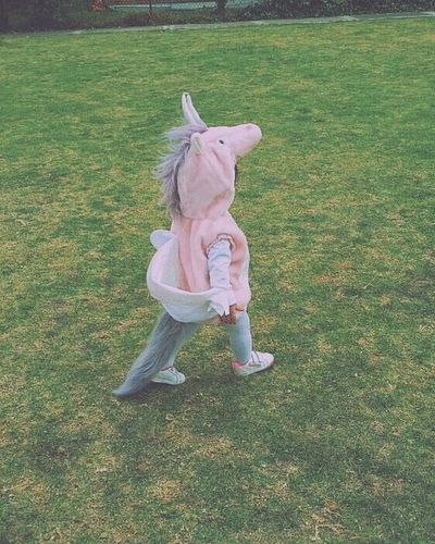 Born To Be Wild Enjoying Life Escaping Hello World Cheese! Baby Sister Unicorn Littlegirl Love FUCK YOU