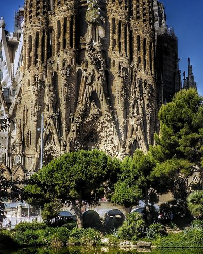La Sagrada Familia Architecture Built Structure Day Tree Building Exterior Sculpture Textured  Travel Destinations Architecture The Architect - 2017 EyeEm Awards