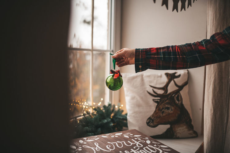 Man holding christmas tree at home