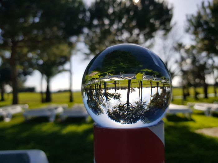 Close-up of crystal ball in park
