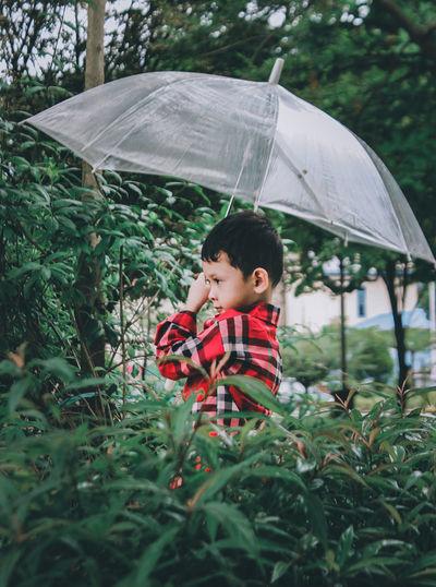 Boy holding umbrella in rain during rainy season