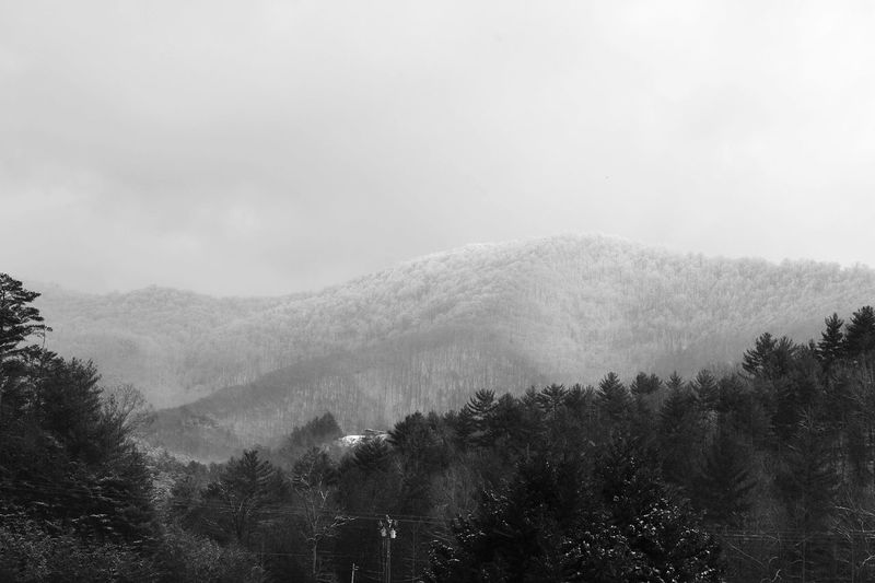 Snow on the mountain, Ellijay Georgia. January 2016 Myhometown Snow Mountains Eyemphotography Theellijays EyeEm Best Shots Biggerphotography Picoftheday Myperspective Nikonphotography My Winter Favorites Winter Blueridgemountains Snowcapped Hwy515 Eyeemphoto