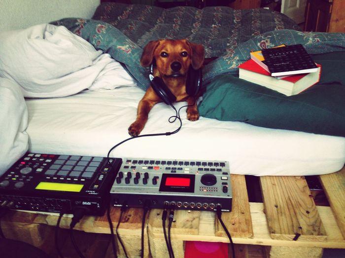 BEATS I Love Techno