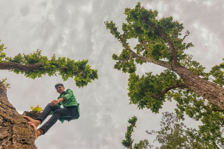Low angle view of man standing on tree against cloudy sky