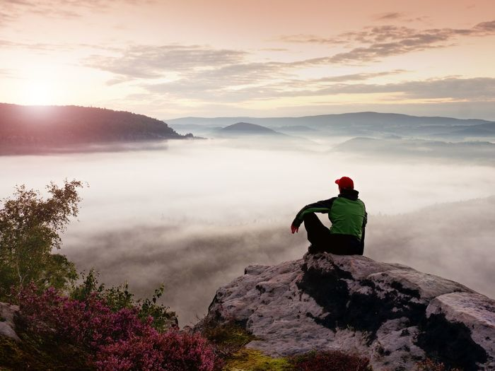 Man tourist sit on rock empire. view point with heather and branches above mist. sunny daybreak