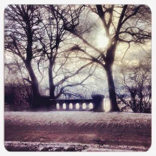 Nature Hamburg The World - My Hood Winter