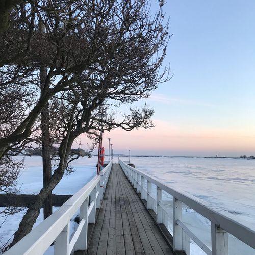 Winter Helsinki,finland Helsinki Sky Water Sea Nature Scenics - Nature Railing Tree Beauty In Nature Horizon Direction Outdoors