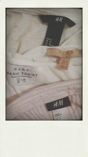 H&M Zara Basic Zara Trafaluc Brands
