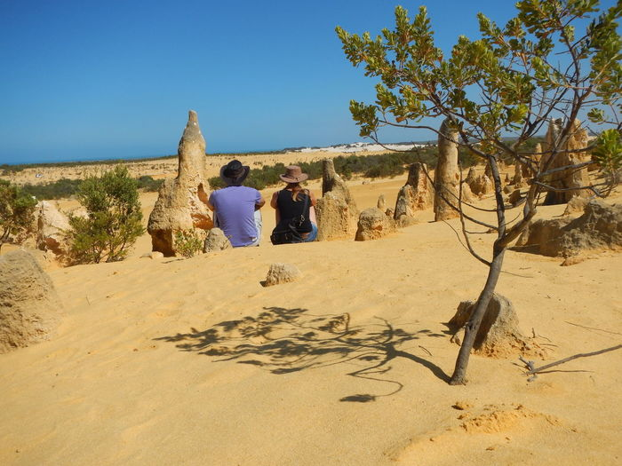 Rear view of couple sitting at desert against clear sky