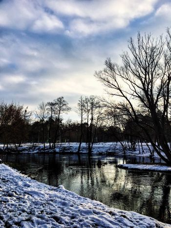 Tree Sky Nature Bare Tree Cold Temperature Water Winter Snow Beauty In Nature Outdoors No People Cloud - Sky Tranquility Scenics River Tranquil Scene Environment Day Frozen Lake Willow Tree