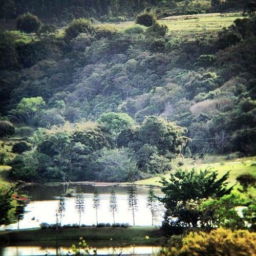 Nature Naturelandscape Nature_pic Allshots Urbangangfamily Igaddict Insta_global Insta_global_urban Green