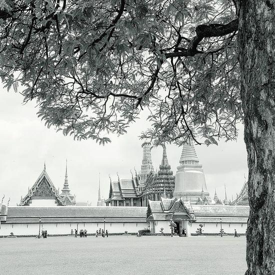 Wat Prakeaw Watprakaew Wat Phra Kaew Wat Phra Kaeo Watprasrirattanasatsadaram Thailand Temple Thailandtravel Thailand Photos Templeofthailand Temple Thailand Thailandtrip
