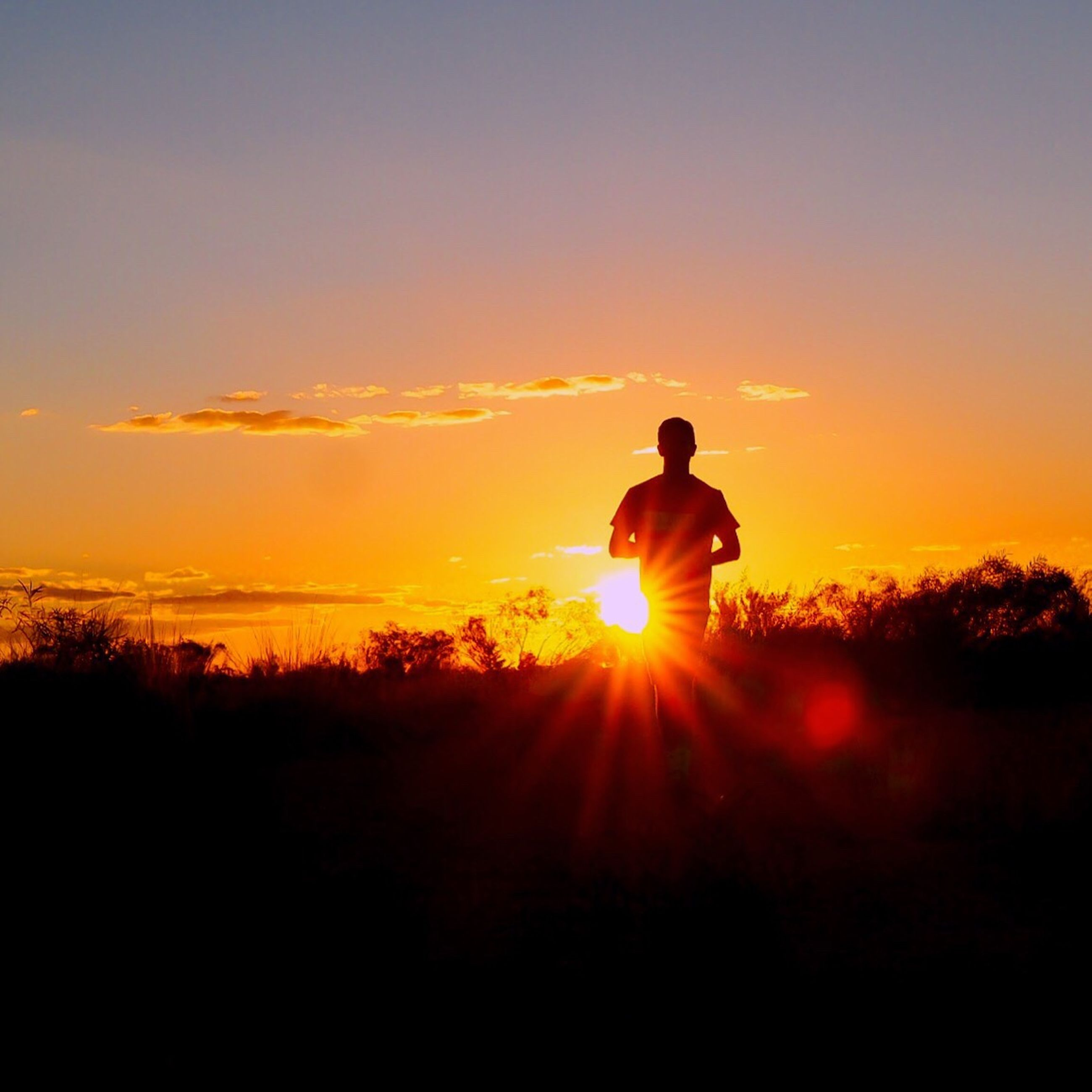 sunset, silhouette, one person, real people, orange color, sun, nature, beauty in nature, leisure activity, standing, men, sunlight, field, scenics, sky, lifestyles, adventure, full length, landscape, outdoors, one man only, tree, only men, adult, adults only, people