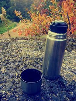 Having Tea A Walk In The Woods Autumn Colors Cliff