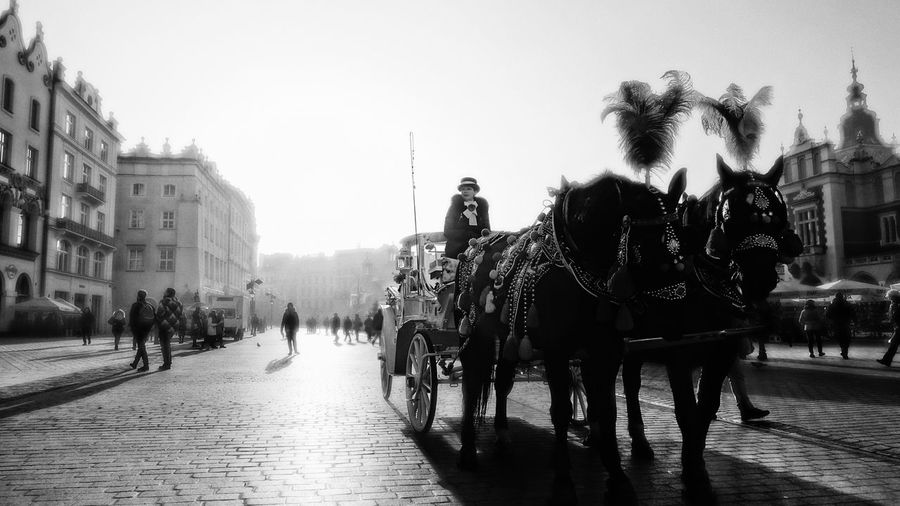 Horse Carriage Kraków, Poland City Christmas Market Carriage And Horses Carriage Ride Blackandwhite Black & White Cobbled Streets Cobblestone Horses In City Horses On The Road Your Ticket To Europe Stories From The City