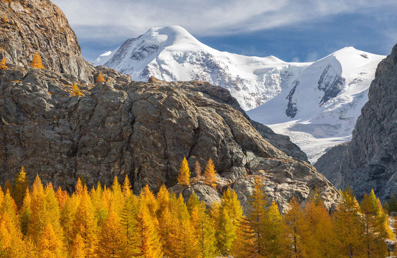 Swiss Alps. Alps Autumn Beauty Beauty In Nature Europe Fall Landscape Mountain Mountain Peak Mountain Range Nature Outdoors Snow Swiss Alps Switzerland Tree