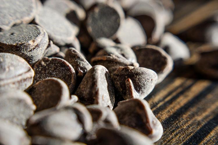 Close-up of shells