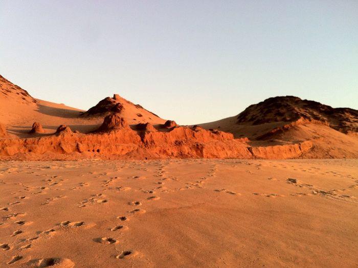 Pleistocene dunes at Marina Beach California at Sunset . Landscape Backgrounds Desert Global Warming Bad Condition Geology Survival Extreme Terrain Environmental Damage Barren Environmental Issues Arid Climate Change Land Dirt Environment Mars Sand Dune
