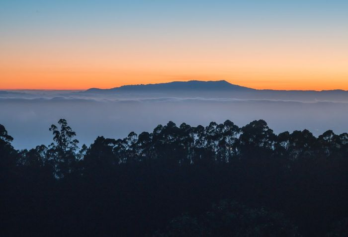 Finally, I took a photo of Mt Tam instead of from it. Mountain Sunset Peaceful Quiet Fog Serene Clouds Hill Distance Distant FAR AWAY Vista Silence Simplicity Simple Layers Silhouette Shadow Forest Trees
