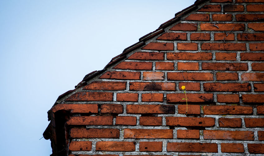 Low angle view of brick wall by building against sky