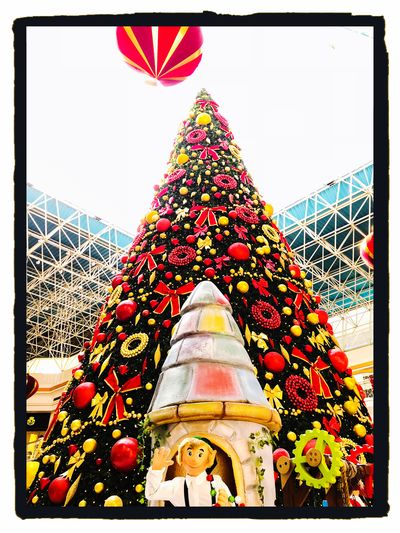 Christmas tree in Wafi Mall, Dubai, United Arab Emirates 🇦🇪 Attraction Show Season  Winter IPhoneography Christmas Christmas Decorations Built Structure Low Angle View No People Day Multi Colored Tree