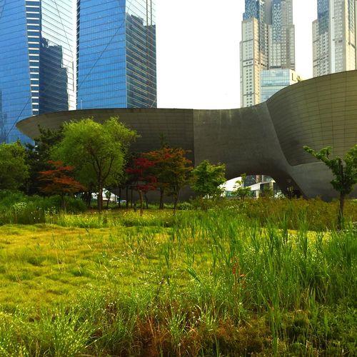 Park Southkorea Korea Incheon Grass SpaceShip Space Another Planet ASIA Building
