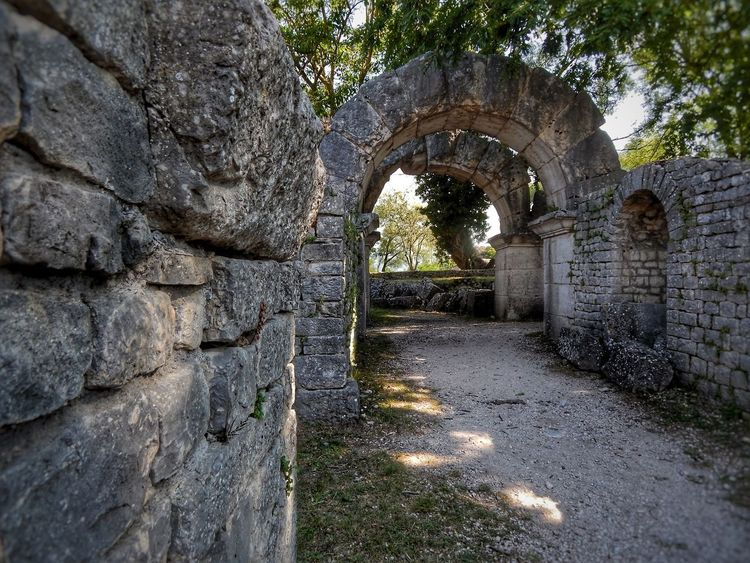 Sepino's streets Ancient Architecture Roman City Roman Ruins Architecture_collection Ancient City Ancient Building Arch Gateway Bestoftheday Tree Arch Ancient Civilization Architecture Old Ruin Historic History The Past Civilization Visiting Historic Building Fort Ancient Archway Stone Wall Ancient Rome Archaeology Amphitheater Ruined