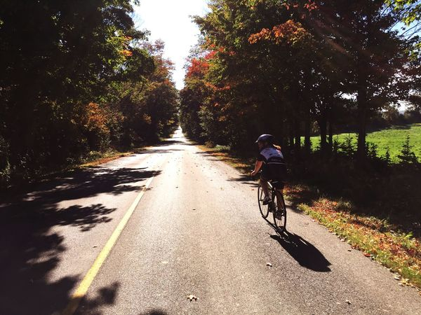 Fall Days Cycling Countryroads Countryroad