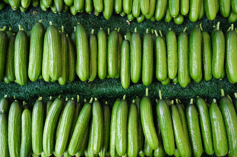 High angle view of cucumbers for sale at market stall