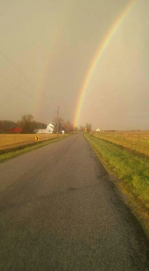 The Great Outdoors - 2016 EyeEm Awards Rainbow Double Rainbow Enjoying Life Beautiful Farmland Nature Photography Photos By Jeanette Farm End Of Rainbow Farm Life Rainbow Sky Rainbow🌈 Double Rainbows Long Goodbye Lost In The Landscape
