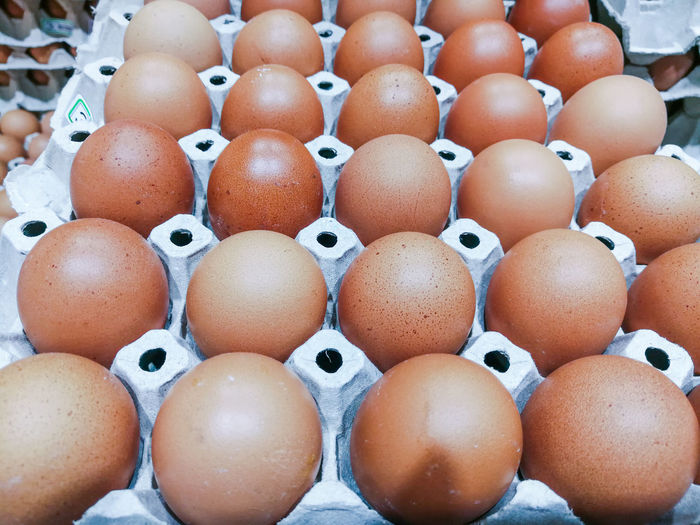 Close-up of eggs in crate