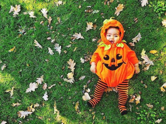 Childhood Grass Halloween Autumn Pumpkin Field Leaf Day One Person Outdoors Looking At Camera Child Playing Children Only Boys Nature Portrait People Happiness