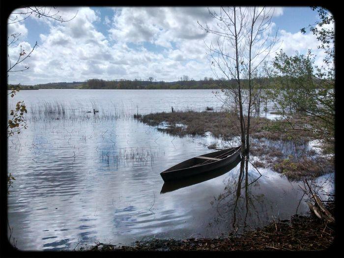 Aveiro Pateiradefermentelos Boat Landscape